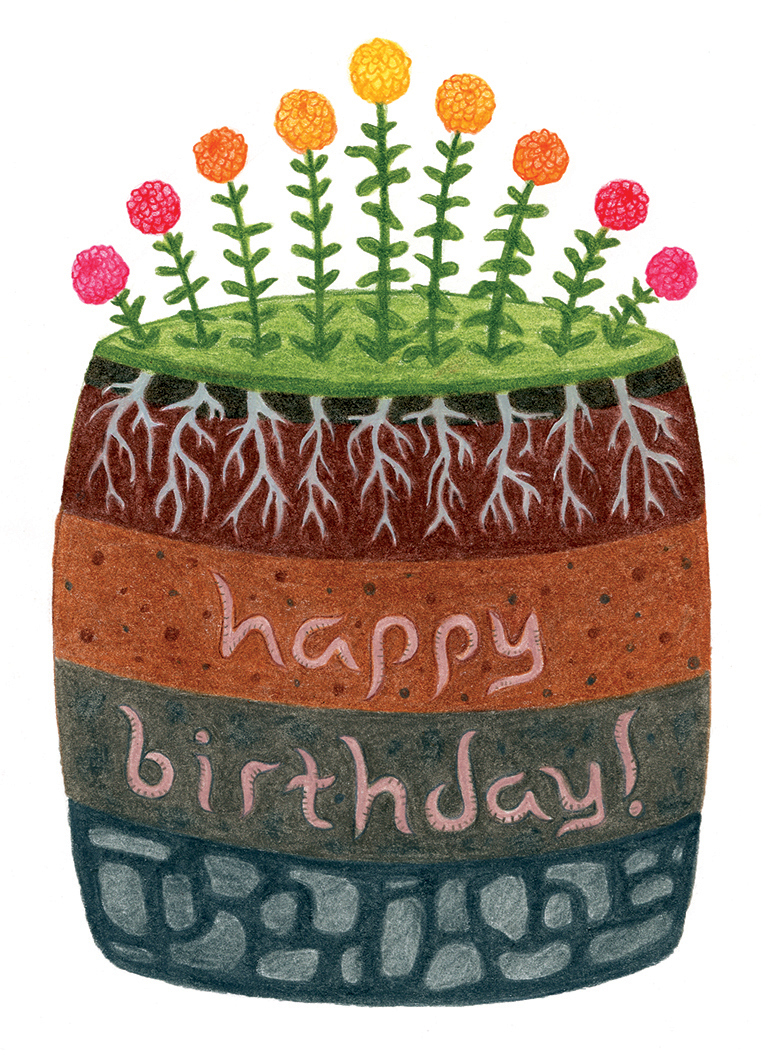Happy birthday seed packet illustration